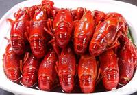 為什麼養殖小龍蝦的人越來越多?小龍蝦的供應量越來越足,價格卻依然這麼貴呢?