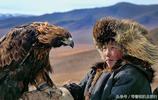 """把狼、鷹當寵物:看看蒙古""""荒野獵人""""的生活"""