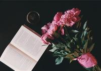 「心語」人生路上沒有永遠的成功,只有永遠的奮鬥