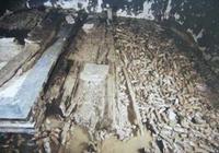 河北一豬圈被眾人圍觀,曾被盜墓賊光顧,專家稱下面埋葬著大昏君