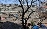 鮮為人知北京國貿最後的城中村,幸福如此之近又如此之遠