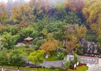 來雨花這個公園,繁華城中一片寧靜的綠