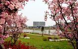 走進中國好大學122:中國藥科大學
