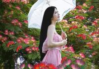 七絕 合歡花