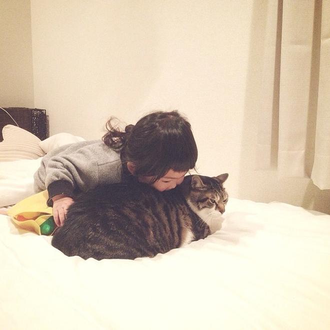 超治癒的呆娃與萌貓:說好了在一起一輩子哦!