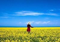 2019年絲綢之路+青海環線旅遊攻略-張掖-嘉峪關-敦煌-茶卡-青海湖