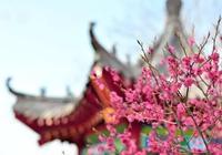 山東濟南各所大學的校花都有誰?