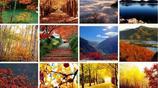 這個秋天,北京最美的賞秋勝地都在這裡!