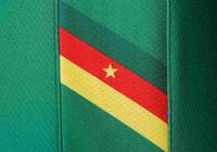 非洲杯巡禮——喀麥隆