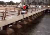 路人看見橋底有八爪魚,紛紛上前去捉,可是都不敢捉了