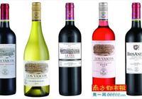 以葡萄酒之名,撒歡在智利