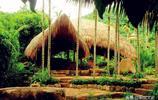 海南的香格里拉,呀諾達雨林,山奇林茂水秀谷深,感受原始的自然