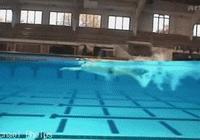 自由泳丨學會這三招,自由泳換氣從此沒問題