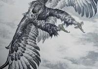工筆畫—鷹