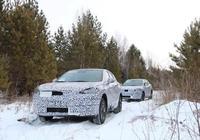 汽車在低溫情況下冷車啟動後猛踩油門,會造成什麼樣的後果?