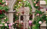 做園林設計的朋友透露:庭院不興貼瓷磚了!瞧下圖高檔愜意又舒適