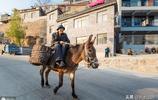 河北一村莊年收入300萬,全村不買拖拉機卻用毛驢,看看是為啥