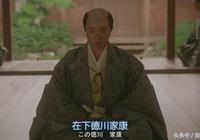 歷史上一統日本的豐臣家族為何最後輸給了德川家族?