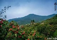 《泰安探店尋寶》泰安海拔五百米的石屋民宿