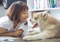 為什麼老人和小孩適合養這六種狗狗?看完這些你就明白了!