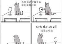這樣區分貓和狗的性格差異簡直太傳神!,令人捧腹