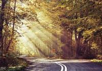 路很長,風景卻很美!