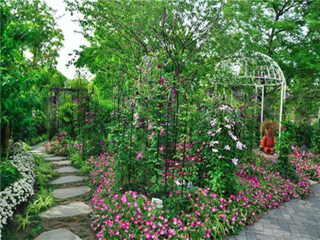 家庭園藝——苗木消費新方向