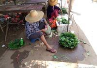 農村賣番薯葉老人,一個麵包吃一天,農村老人捨不得購買快餐
