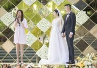 楊子姍辦答謝宴趙薇當證婚人 楊子姍和趙薇啥關係?