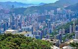 香港專欄|看香港,從太平山頂開始