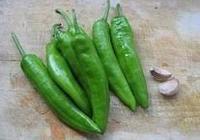 虎皮青椒不再只做配角,下鍋簡單煎,美味的虎皮青椒最好吃!