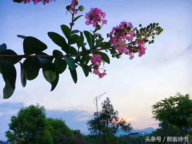 碎言碎語,滿滿哲理!(73)