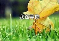 餘秋雨:我在等你(美文)