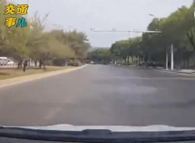一組動圖提醒你:大寬馬路任遨遊 回頭看你不可能