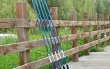 去湖庫野釣才發現,海竿不吃香了!年輕人都帶這種竿,機智有才