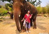 泰國和馬來西亞還有越南哪個國家最亂?不適合旅遊?
