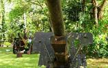 二戰日軍遺留武器殘骸,島上飛機大炮清晰可見