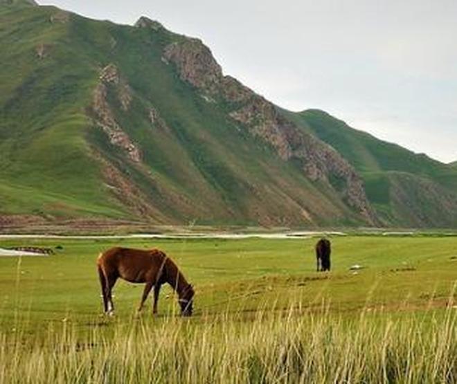 壯美,新疆萬里行