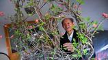 只有20釐米長的刺梅小枝條,山西88歲老人用22年養成雙喜造型盆景