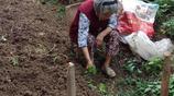 90歲老人養育三個子女,2個是老闆1個是教師,可依舊獨自在農村