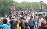 1110萬遊客大軍殺向杭州,國慶的旅遊潮,從西湖被佔領開始