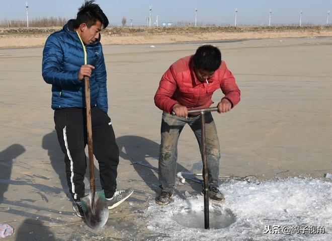 零下24度的黃河上破冰冬捕,5斤重的大白鰱出水5秒鐘被凍死