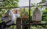 梧州——老城區舊印象