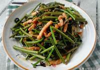 """在東北有一種山野菜,叫""""猴腿菜"""",你吃過嗎?比婆婆丁有營養"""