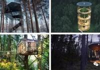 球體樹屋、玻璃樹屋 全球13座最美樹屋你見過嗎?