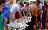 秋風起,蟹腳肥 休漁期結束在即 梭子蟹提前預熱海鮮市場