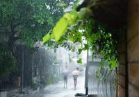 「美文」夜雨