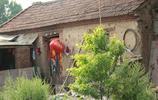 實拍安徽農村,破舊荒涼的農家小院已無人煙,雜草層生,長滿思念