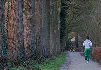堅持慢跑會長肌肉嗎?慢跑的幾個技巧