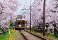 應該去日本留學,還是歐洲留學?